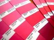 Pantone Colour